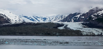 Παγωμένος τομέας στον κόλπο παγετώνων Στοκ φωτογραφία με δικαίωμα ελεύθερης χρήσης
