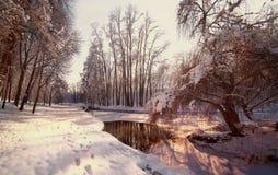 Παγωμένος τοπίο ποταμός κοντά σε ένα δάσος το χειμώνα Άποψη του παγωμένου ποταμού στο πάρκο Ρυάκι στο χιονώδες τοπίο μικρός χειμώ Στοκ Φωτογραφία