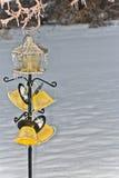 Παγωμένος τροφοδότης πουλιών κατωφλιών στοκ εικόνα με δικαίωμα ελεύθερης χρήσης