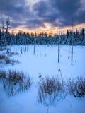 Παγωμένος υδροκρίτης στην ανατολή το χειμώνα στοκ φωτογραφία με δικαίωμα ελεύθερης χρήσης