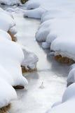 παγωμένος χείμαρρος Στοκ Εικόνες