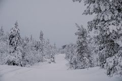 Παγωμένος χειμερινός δρόμος στη Φινλανδία στοκ εικόνες