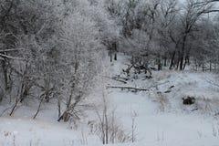 Παγωμένος χειμερινός ποταμός με Hoarfrost Στοκ εικόνα με δικαίωμα ελεύθερης χρήσης