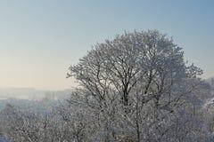 παγωμένος χειμώνας ανασκόπησης Στοκ Εικόνες
