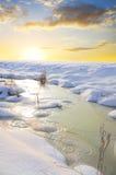 παγωμένος χειμώνας δέντρων εποχής ποταμών στοκ φωτογραφία