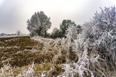 παγωμένος χειμώνας τοπίων Στοκ εικόνες με δικαίωμα ελεύθερης χρήσης