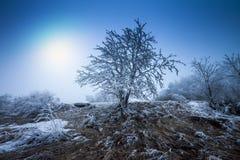 παγωμένος χειμώνας τοπίων Στοκ εικόνα με δικαίωμα ελεύθερης χρήσης