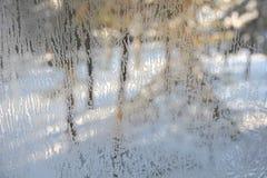 παγωμένος χειμώνας όψης γυαλιού Στοκ Φωτογραφίες