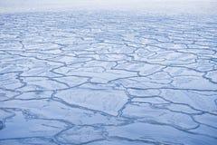 παγωμένος χειμώνας Στοκ εικόνα με δικαίωμα ελεύθερης χρήσης