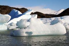 παγωμένος Στοκ Φωτογραφίες