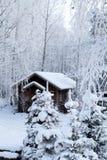 Παγωμένο δάσος στοκ εικόνα