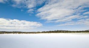 Παγωμένο έδαφος έλους το χειμώνα Στοκ Φωτογραφίες