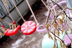 Παγωμένο δέντρο brench πέρα από τη θολωμένη ταλάντευση για των παιδιών το χειμώνα στοκ εικόνα με δικαίωμα ελεύθερης χρήσης