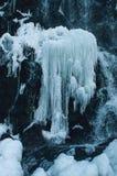 Παγωμένο εθνικό πάρκο Harz Brocken χειμερινών τοπίων καταρρακτών στοκ φωτογραφία