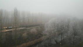 Παγωμένο λευκό Στοκ Φωτογραφίες