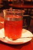 Παγωμένο κρύο τσάι στοκ εικόνες