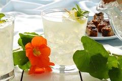 παγωμένο ποτά λεμόνι στοκ εικόνες