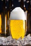 Παγωμένο ποτήρι της μπύρας με τους κύβους πάγου στοκ εικόνες