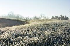 Παγωμένο πρωί αρχές Δεκεμβρίου Στοκ Εικόνες