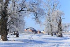 Παγωμένο πρωί στο χωριό Στοκ Εικόνα