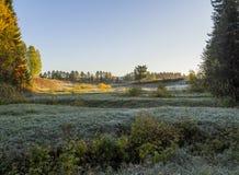 Παγωμένο πρωί Στοκ φωτογραφίες με δικαίωμα ελεύθερης χρήσης