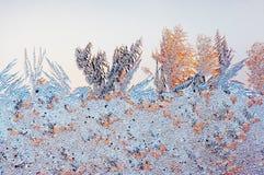 παγωμένο πρότυπο Στοκ Εικόνες