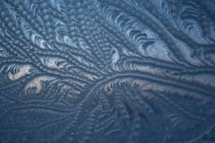 Παγωμένο σχέδιο στο χιόνι zamerzshie στο χειμώνα γυαλιού στοκ φωτογραφία
