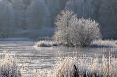 παγωμένο τοπίο σουηδικά στοκ φωτογραφίες