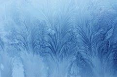 παγωμένο φυσικό πρότυπο Στοκ εικόνες με δικαίωμα ελεύθερης χρήσης