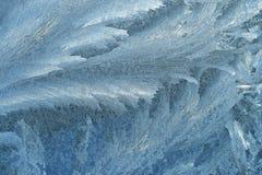 παγωμένο φυσικό πρότυπο Στοκ Εικόνες