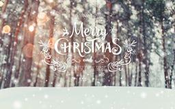 Παγωμένο χειμερινό τοπίο στο χιονώδες δασικό υπόβαθρο Χριστουγέννων με τα δέντρα έλατου και το θολωμένο υπόβαθρο του χειμώνα με τ Στοκ Φωτογραφία