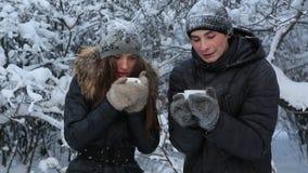 Παγωμένο όμορφο κορίτσι με έναν τύπο που θερμαίνεται από το καυτό τσάι Χιονισμένα δέντρα στο χειμερινό πάρκο απόθεμα βίντεο