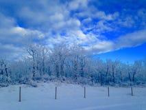 Παγωμένο mornin Στοκ Εικόνες