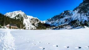 Παγωμένο pleso Popradske λιμνών σε υψηλό Tatras, Σλοβακία Στοκ φωτογραφία με δικαίωμα ελεύθερης χρήσης