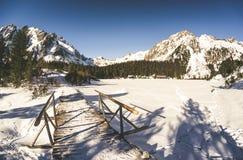 Παγωμένο pleso Popradske λιμνών σε υψηλό Tatras, Σλοβακία Στοκ Εικόνα
