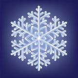 Παγωμένο snowflake Στοκ φωτογραφίες με δικαίωμα ελεύθερης χρήσης
