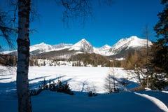 Παγωμένο Strbske Pleso σε υψηλό Tatras, Σλοβακία Στοκ Φωτογραφίες