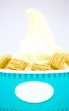 Παγωτό βανίλιας γιαουρτιού με τα δημητριακά Στοκ φωτογραφία με δικαίωμα ελεύθερης χρήσης
