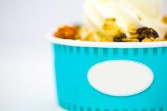 Παγωτό βανίλιας γιαουρτιού με τα δημητριακά Στοκ φωτογραφίες με δικαίωμα ελεύθερης χρήσης
