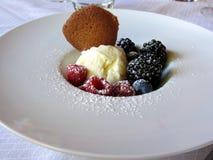 Παγωτό βανίλιας με τα μούρα Στοκ φωτογραφίες με δικαίωμα ελεύθερης χρήσης