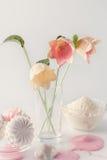 Παγωτό και γαλακτοκομικά προϊόντα Στοκ Εικόνες