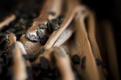 Παγωτό κακάου και σοκολάτας Στοκ φωτογραφία με δικαίωμα ελεύθερης χρήσης