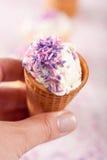 παγωτό κώνων Στοκ Εικόνα