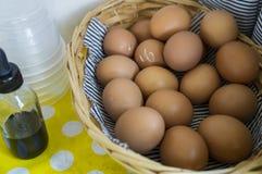 Παγωτό μιγμάτων αυγών που κατασκευάζει το γλυκό γάλα concpet Στοκ Φωτογραφία