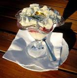 Παγωτό που καλύπτεται με το εδώδιμο χρυσό επιδόρπιο στοκ εικόνες