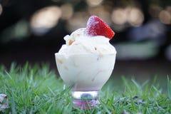Παγωτό στη χλόη Στοκ Εικόνα