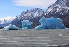 Παγόβουνα στο γκρι λιμνών del εθνικό πάρκο paine torres Χιλή στοκ εικόνες