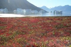 παγόβουνα της Γροιλανδίας μακριά Στοκ Φωτογραφία