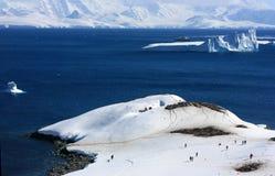 Παγόβουνο, ανταρκτικό βουνό στο χιόνι Στοκ φωτογραφίες με δικαίωμα ελεύθερης χρήσης