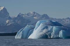 Παγόβουνο που επιπλέει στη λίμνη Argentino Στοκ εικόνα με δικαίωμα ελεύθερης χρήσης